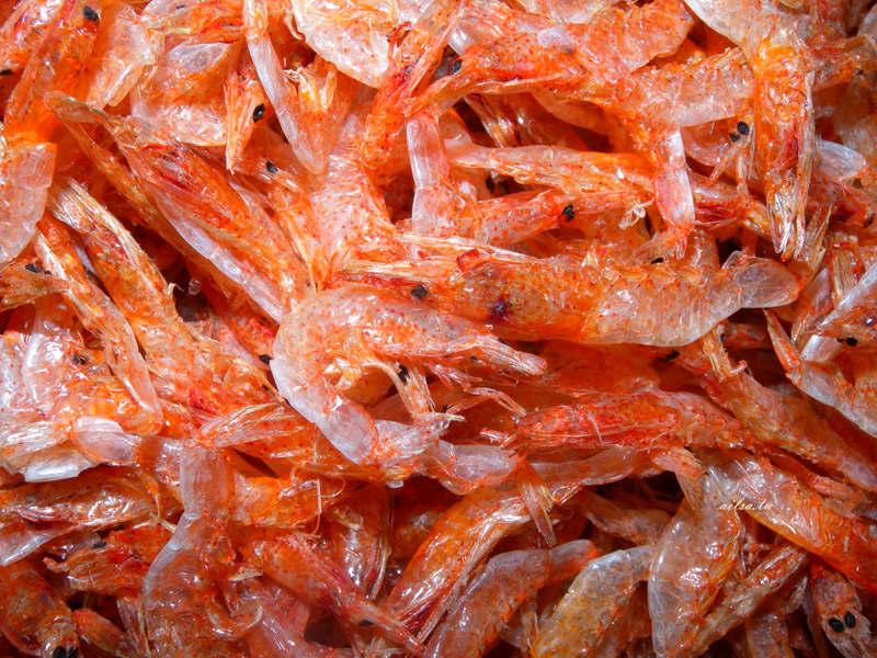 蝦知識│除了白蝦、草蝦、明蝦,台灣常見的蝦子種類原來還有這些-蝦子品種